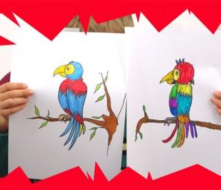 M thode pour dessiner un perroquet facilement et le colorier avec des feutres - Dessiner un ninja ...